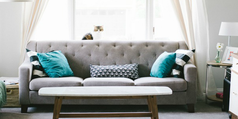 Deluxe Dry  Upholstery Cleaning